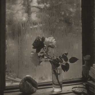 Josef Sudek, Le monde à ma fenêtre