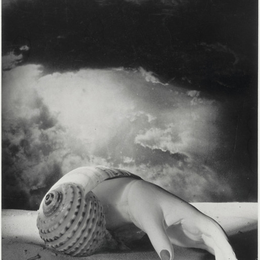 Dora Maar (1907-1997), Sans titre [Main-coquillage], 1934