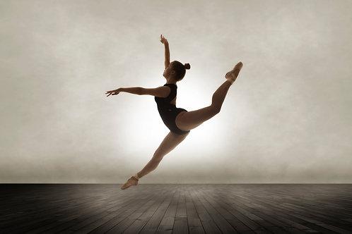 Dance Portfolios Deposit