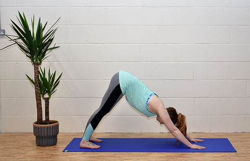 set sequence yoga classes  firefly yoga