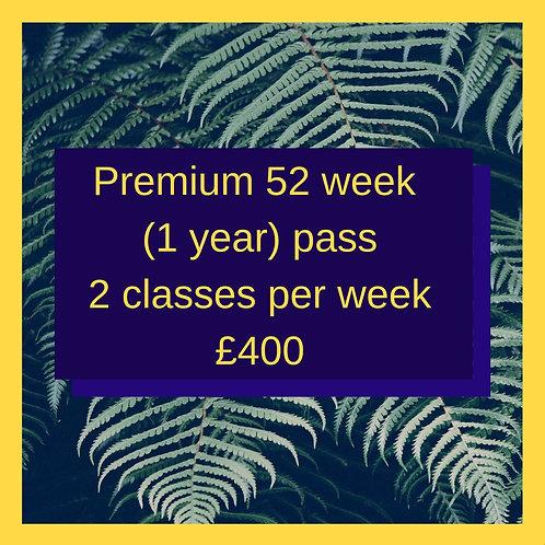 2 classes/week for 1 year (Premium)