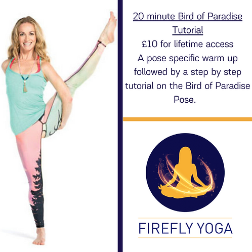 How To -Bird of Paradise Pose