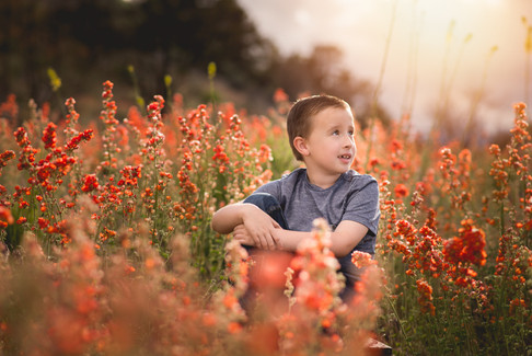 boy in red flowers background