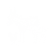 ANIMALS 2(1).png