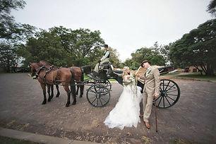 wedding_horse_carriage_hire_pretoria.jpg