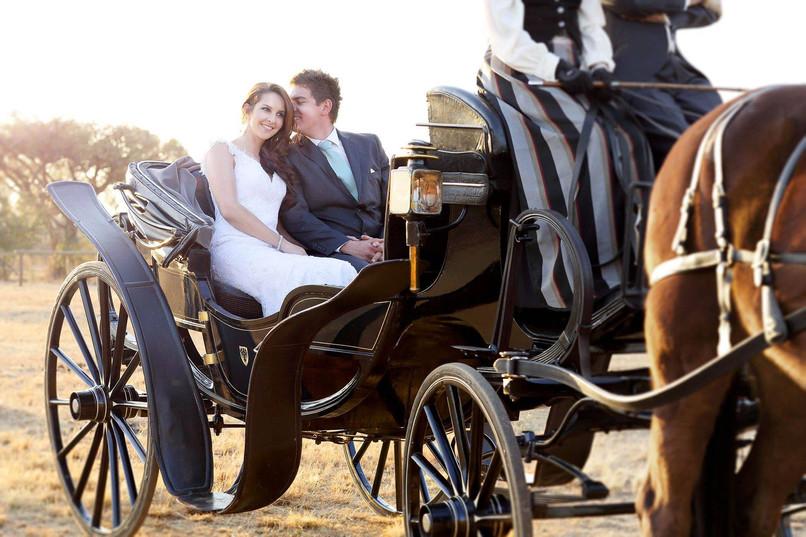 horse_carriage_hire_pretoria01.jpg