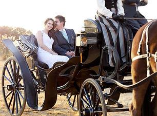 horse_carriage_hire_pretoria.jpg