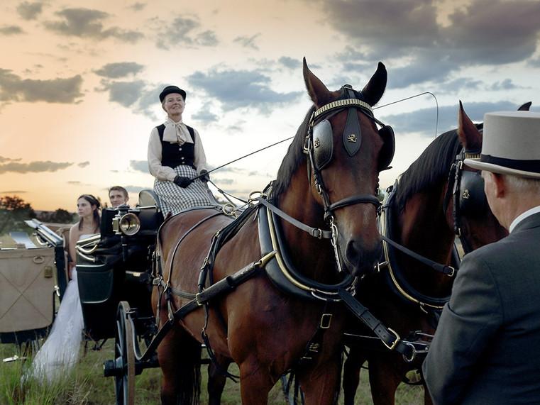carriage_hire_vinatge_gauteng.jpg