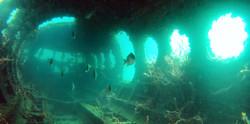 diving-diver-bocas-del-toro-sea