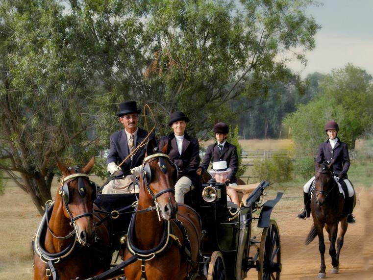 wedding_carriage_hire_pretoria_1.jpg