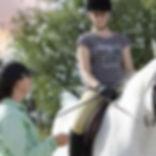 dressage_riding_lessons_pretoria.jpg