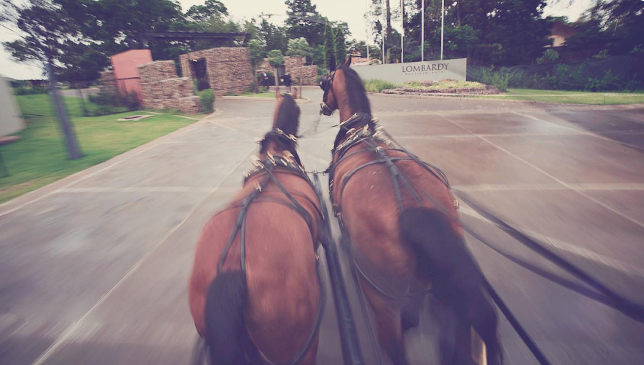vinatge_carriage_hire_for_wedding_johann
