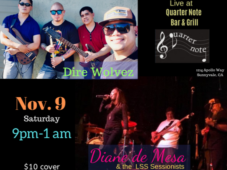 Diane & LSS/Dire Wolvez - live at Quarter Note! 11/9