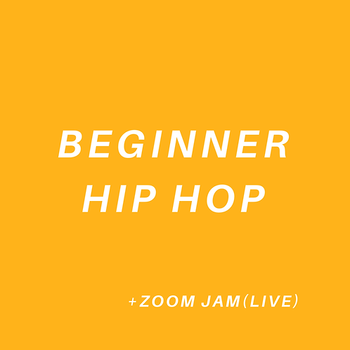Beginner Hip Hop (All Ages)