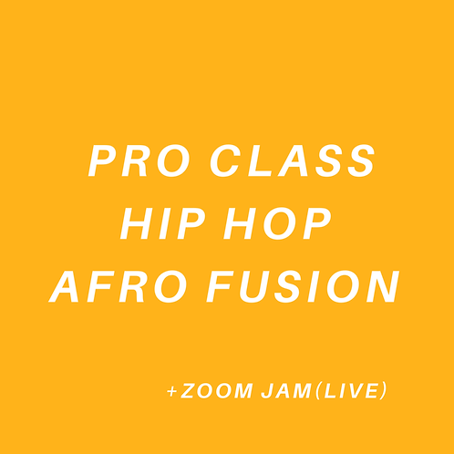 PRO Class Hip Hop Afro Fusion (All Ages)