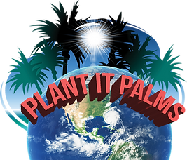 plant-it-palms final logo- .png