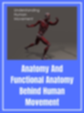 Joint Movements And Actions copy 12.png