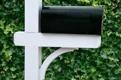 "5""x5"" Cedar Post With Cap & Arch"
