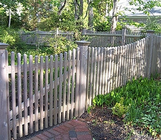 Scalloped Colonial Picket