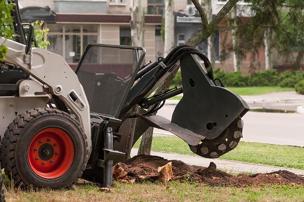 shredder for sawn wood.jpg