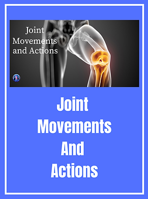 Joint Movements And Actions copy 13.png