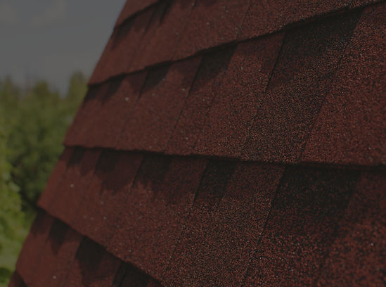 Roof%20Shingles%20_edited.jpg