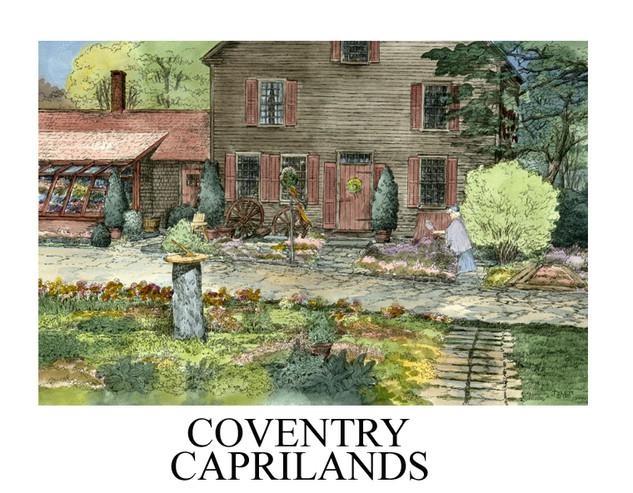 Coventry capri-Open Edition.jpg