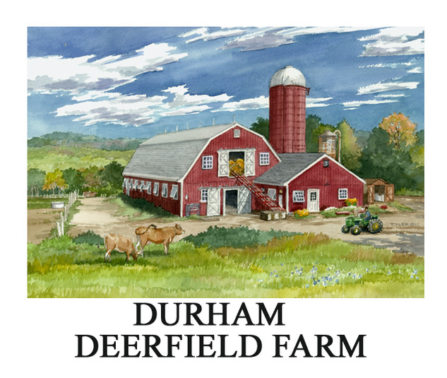 Durham deer.jpg