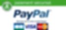 ob_550e0d_jus-detox-bio-paiement-securis