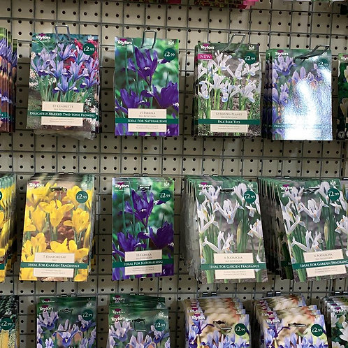 Bulb Collection Bundle £10 - Mixed