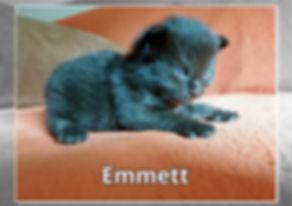 Emmett-0002.jpg