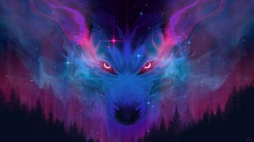 Aurora Canis