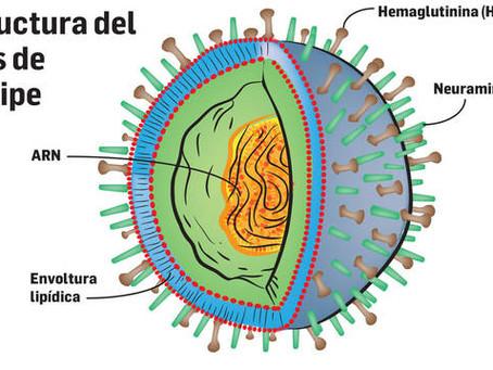 ¿Debo vacunar a mi hijo de la gripe?