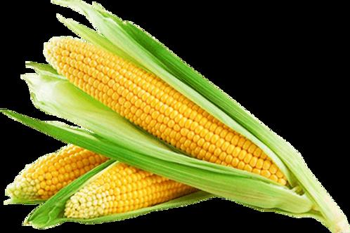 Corn (per dozen)