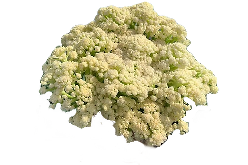 Caulilini (per pound)