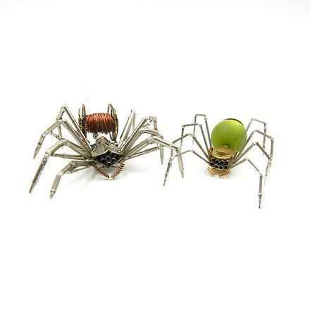 spiders113114.jpg