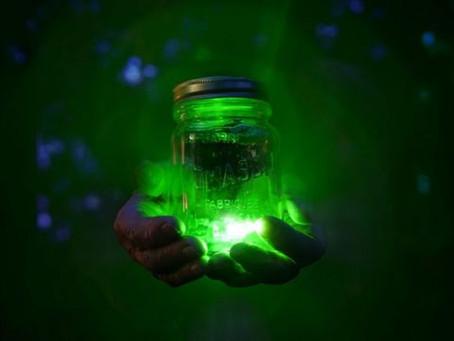 Memória quântica: o experimento científico que conseguiu capturar e transportar a luz