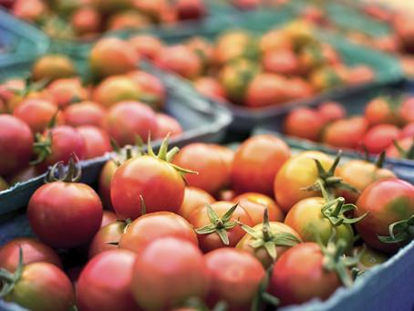 Sistema Nacional de Segurança Alimentar enfrenta desafios