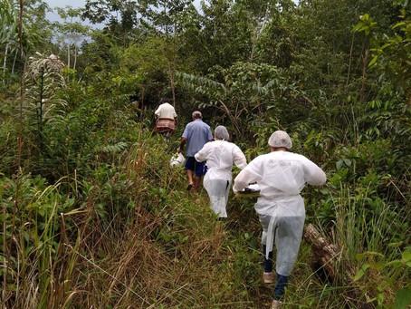 Equipe de saúde se equilibra em tronco sobre riacho para levar vacina da Covid a comunidade isolada
