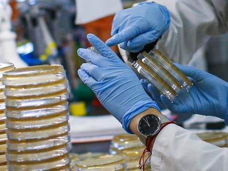 Cientistas da USP sequenciam genoma do coronavírus dois dias após 1º caso