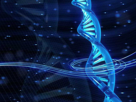 Teste de ancestralidade genética ajuda a prevenir doenças graves