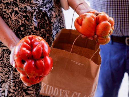 Agricultores competem pelo título de 'tomate mais feio' na Espanha