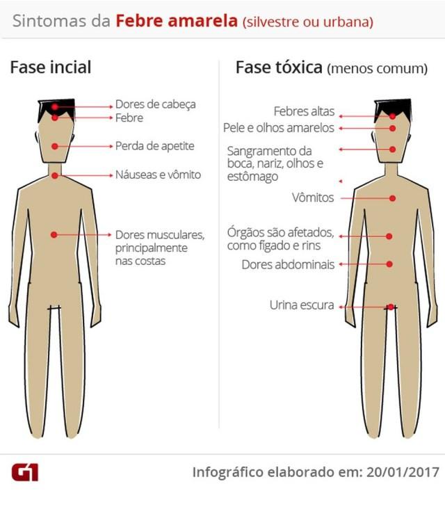 Sintomas da febre amarela — Foto: Arte/G1