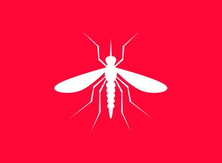 Dengue: DF registra 44,9 mil casos e 44 mortes