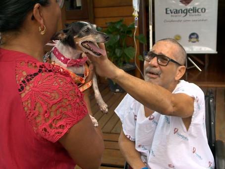Paciente em recuperação após AVC se emociona com visita de cadelinha ao hospital no ES
