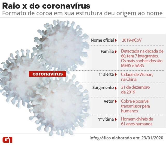 Raio X do novo coronavírus — Foto: Amanda Paes e Cido Gonçalves/Arte G1
