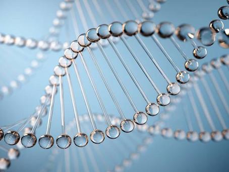 Pessoas que vivem mais de 105 anos podem ter variantes genéticas que reparam DNA