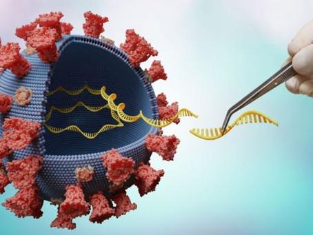 Brasil, Índia e África do Sul foram focos de surgimento de novas variantes do coronavírus até junho