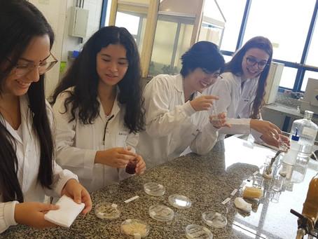 Estudantes de Campinas criam absorvente biodegradável com gel à base de amido e bucha vegetal