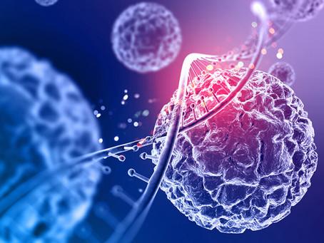 Melatonina produzida no pulmão impede infecção pelo novo coronavírus
